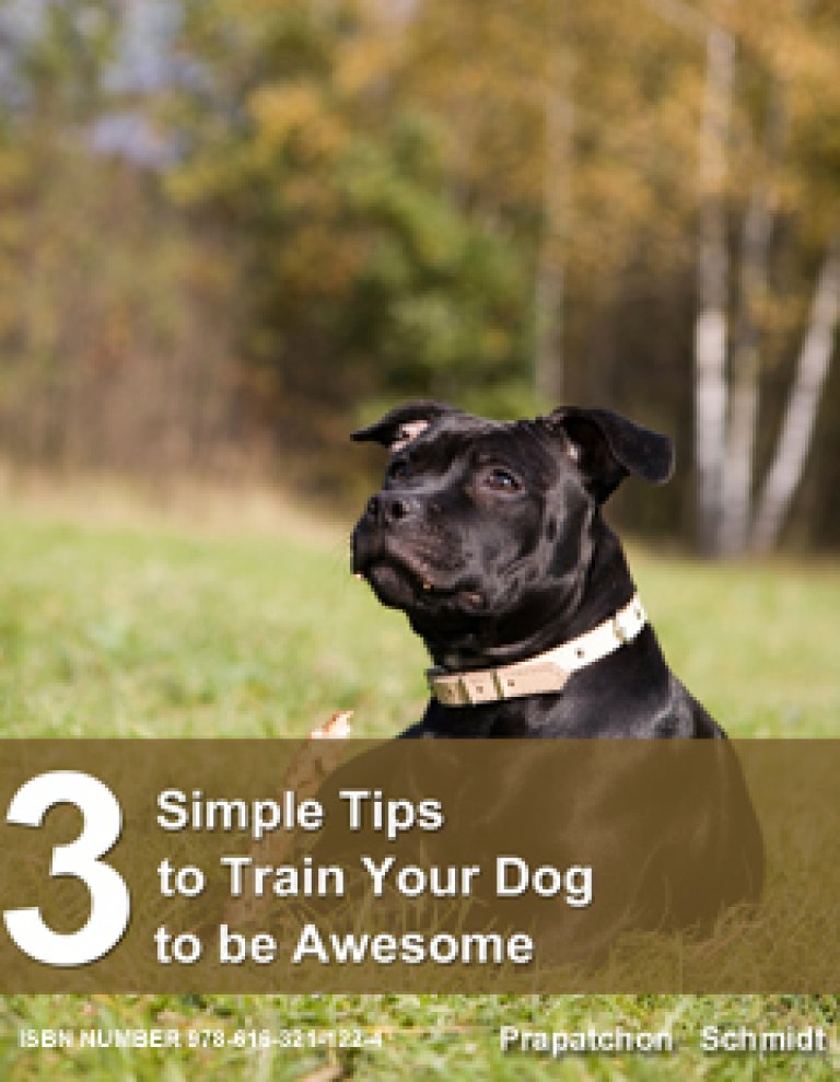 3 Simple Tips to Train Your Dog to be Awesome (ePub)