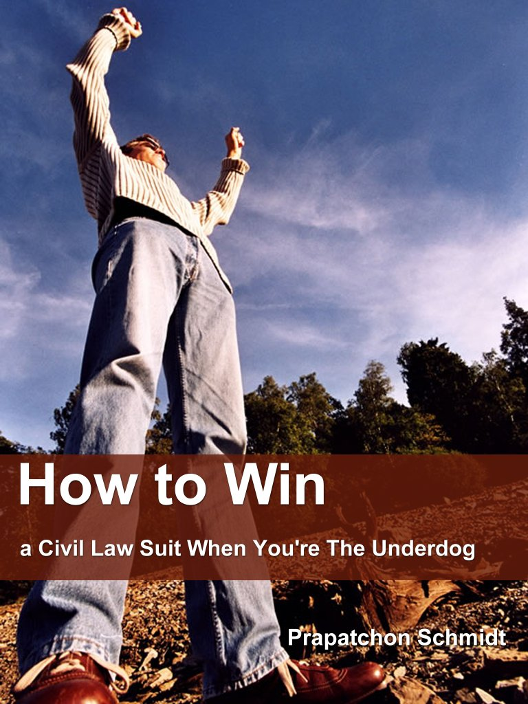 How to Win a Civil Law Suit When You're The Underdog (ePub)